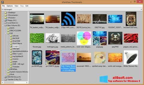 Ekraanipilt IrfanView Windows 8