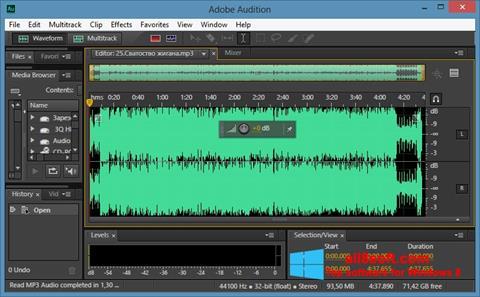 Ekraanipilt Adobe Audition CC Windows 8