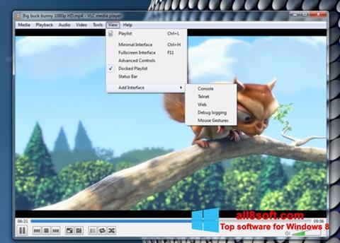 Ekraanipilt VLC Media Player Windows 8